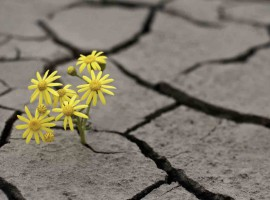 adversity overcome stress growth inspiration motivation