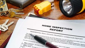 inspection house report pest check building property