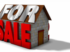Mortgagee & Deceased estate auctions     Will Hampson