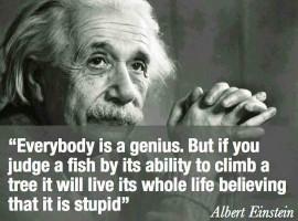 Einstein success goal smart