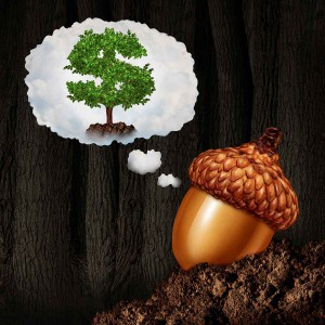 long-term-investment-acorn-tree-growth-plant-learn