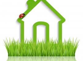 54205093 - green home icon on white background