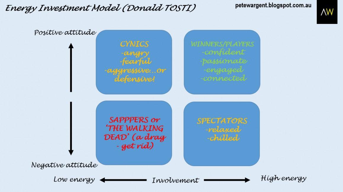 Energy investment model