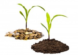 Farm Seed Soil Grow Wealth Money Coin 300x214