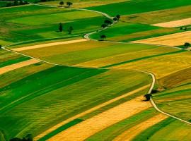 Land prices soar