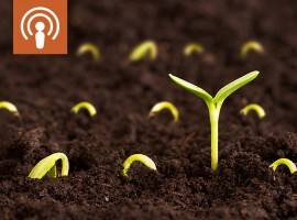 [Podcast] How to achieve capital growth at this stage of the property cycle | Property Insights from Dr. Andrew Wilson