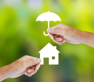 Lenders Mortgage Insurance