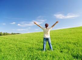 7 Pillars of Happiness