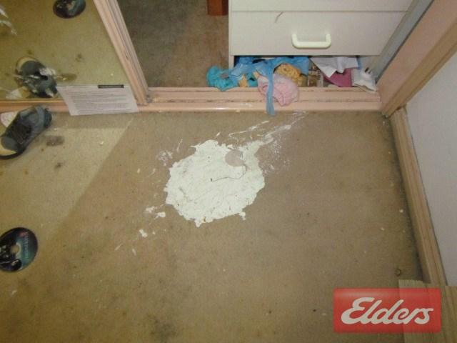 Photos of paint on floor Real Estate Agent Lucretia Road Seven Hills NSW 2147 Australia
